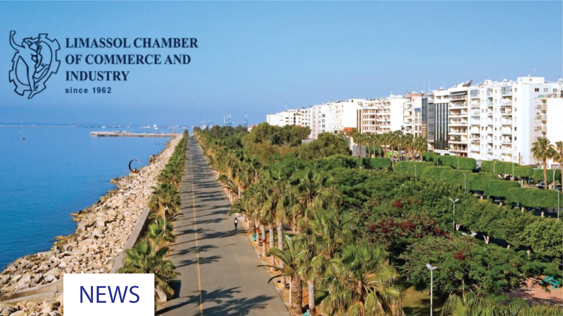 NEW BOARD OF DIRECTORS FOR THE LIMASSOL CHAMBER OF COMMERCE AND INDUSTRY